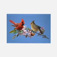 Cardinal pair Rectangle Magnet