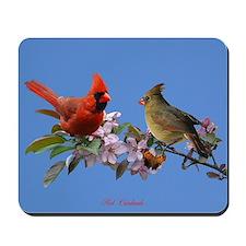 Cardinal pair Mousepad