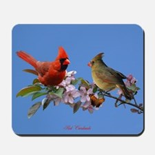 Cardinal pair Mousepad