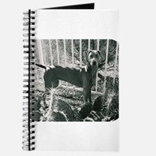 Sedona Weimaraner 9 Journal