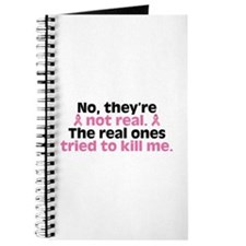 They're Not Real Journal
