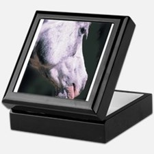 Arabian Horse-Chas Keepsake Box