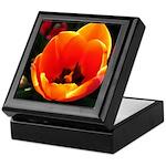 Spring Tulip Keepsake Box
