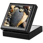 Acadia N.P. Sea Rocks Keepsake Box