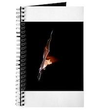 108BAT Journal