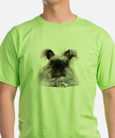 Peace please fur wearing Hello Bunny T-Shirt
