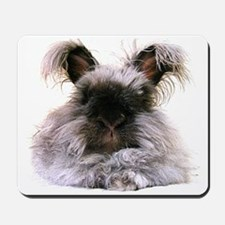 Hello Bunny rabbit Mousepad