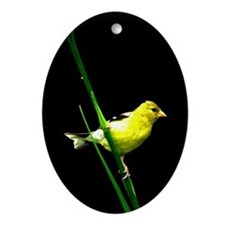 Goldfinch Ornament (Oval)