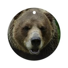 Grizzly Bear Ornament (Round)