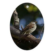 Sparrow Ornament (Oval)