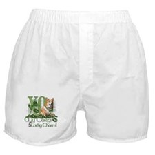 My Corgi is Me Lucky Charm Boxer Shorts