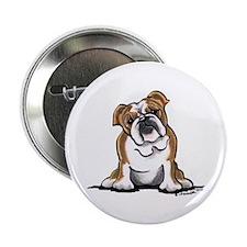 "Brown White Bulldog 2.25"" Button"