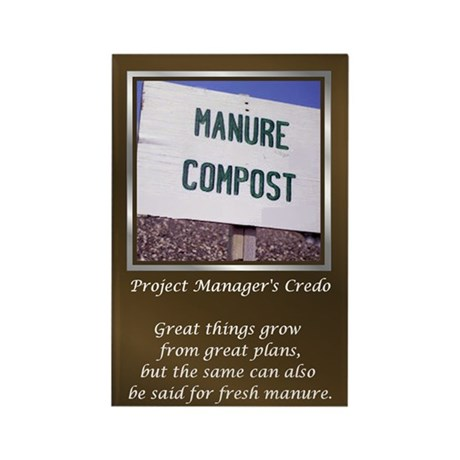 Project Managers Rectangle Magnet (10 pack)