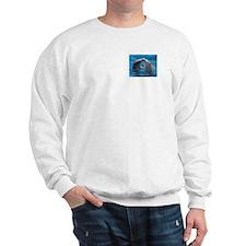 Cute Dolphin Sweatshirt
