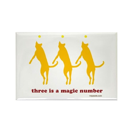 Magic Number 3 Rectangle Magnet (10 pack)