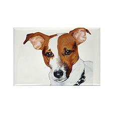 Jack Russell Portrait Rectangle Magnet