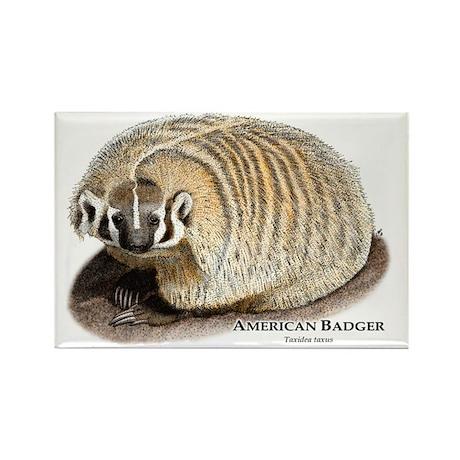 American Badger Rectangle Magnet