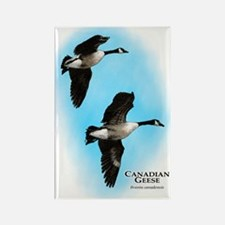 Canadian Geese Rectangle Magnet