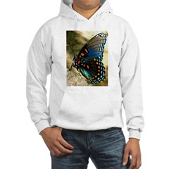 Red-Spotted Purple Limenitis Hoodie