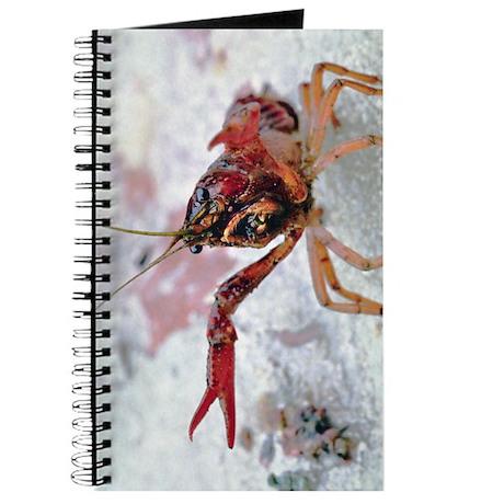 Crawfish 1 Journal