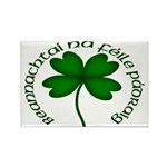 Four Leaf Clover (Gaelic) Magnets (10 pack)