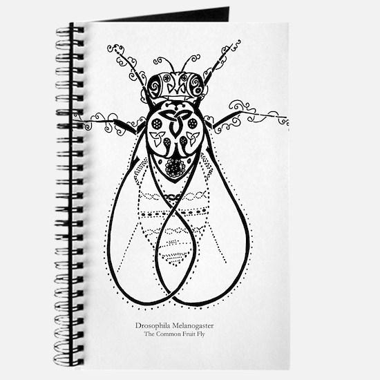 Fruit Fly Journal