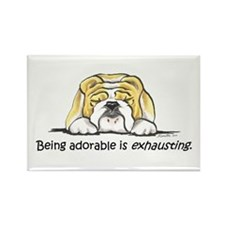Adorable Bulldog Rectangle Magnet