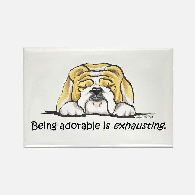 Adorable Bulldog Rectangle Magnet