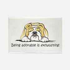 Adorable Bulldog Rectangle Magnet (100 pack)