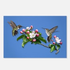 Hummingbirds Postcards (Package of 8)