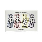 Dare to be Different Cows Rectangle Magnet (100 pa