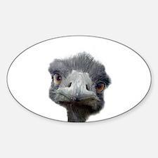 Ostrich Decal