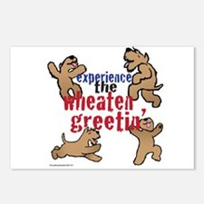 Wheaten Greetin' Postcards (Package of 8)