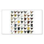 49 Hen Breeds Sticker (Rectangle 50 pk)
