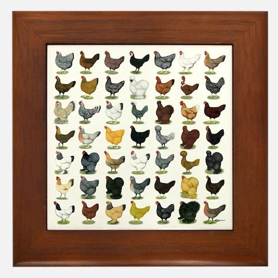 49 Hen Breeds Framed Tile
