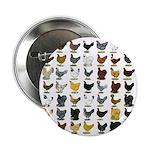 """49 Hen Breeds 2.25"""" Button (10 pack)"""