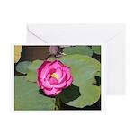 Lotus 1 Greeting Cards (Pk of 10)