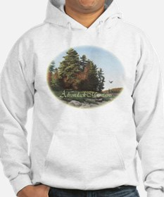 Evening Flight Hoodie Sweatshirt