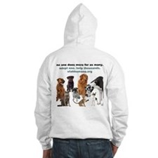 Cool Shelter cat Hoodie