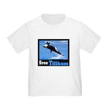 Tilikum the Orca T