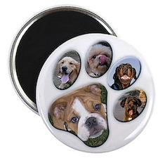 Dog Paw Photo - Magnet