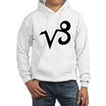 Capricorn Sign Gift Gear Hooded Sweatshirt