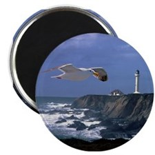 "Lighthouse & Seagull 2.25"" Magnet (10 pack)"