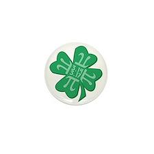 Pirish 3.14 3.17 Mini Button (10 pack)