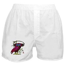DJ HOOT OWL LIVE FROM JAPAN Boxer Shorts
