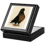 Kite Tumbler Pigeon Keepsake Box