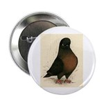 "Kite Tumbler Pigeon 2.25"" Button (10 pack)"