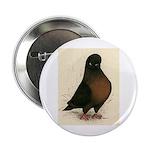 """Kite Tumbler Pigeon 2.25"""" Button"""