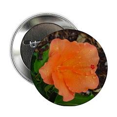 Orange Hybiscus Button
