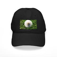 Mushroom Baseball Hat